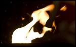 (c) 2010 - Weihnachtsmarkt in Klagenfurt. - Bild zeigt: ein Lagerfeuer am Weihnachtsmarkt am Neuen Platz pressefotos, sportfoto, sportfotos, kärnten, kaernten, pressefoto, oskar, höher, wolfgang, jannach, sport, wirtschaft, kultur, politik, innenpolitik, außenpolitik, lokal, chronik, fotos, fotografie, fotographie, canon, eos, 1d, mark IV, mark 4, fotopool, powerpixx, höherfoto, hoeherfoto, klagenfurt, villach, wolfsberg, spittal, feldkirchen, völkermarkt, voelkermarkt, lienz, osttirol, hermagor, archiv, fotoarchiv, photo, photoarchiv, kleine, zeitung, kleinzeitung, ktz, kärntner tages zeitung, kärntner woche, kärntner, woche, kronen zeitung, krone, kronen, zeitung, sportfotographie, sportfotografie, kurier, kärntner monat, monatsmagazin, tageszeitung, wochenzeitung, gratiszeitung, fußball, fussball, eishockey, icehockey, tennis, basketball, handball, volleyball, beachvolleyball, schi, ski, ski alpin, ski nordisch, schi nordisch, nordisch, langlaufen, schispringen, skispringen, biathlon